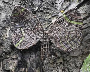 Verstopte vlinder